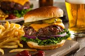 stock photo of hamburger-steak  - Grass Fed Bison Hamburger with Lettuce and Cheese - JPG