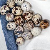 stock photo of quail egg  - Quail eggs on the table - JPG
