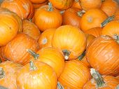 pumpkins_filtered