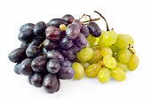 Clusters Of Black And White Grapes