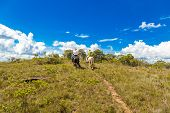 foto of nomads  - People riding horses in a beautiful scenery - JPG