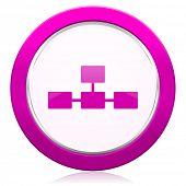 stock photo of cisco  - database violet icon   - JPG