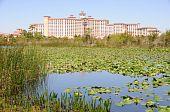 Florida Hotel with Marshland