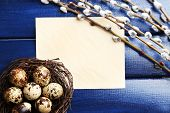 foto of pussy  - Bird eggs in nest and pussy willow flowers branches on wooden background - JPG