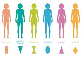 image of hourglass figure  - female body types anatomy - JPG