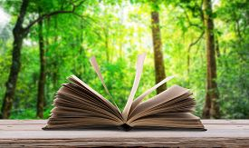 stock photo of photosynthesis  - Open book  on wood table in green forest - JPG