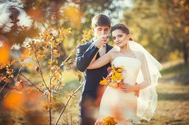 stock photo of hand kiss  - Wedding photography in autumn park where young groom kissing his hand gently bride in her wedding dress