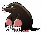 stock photo of maliciousness  - Cartoon malicious mole  - JPG