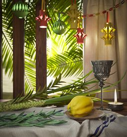 picture of species  - Symbols of the Jewish holiday Sukkot with palm leaves and candle - JPG