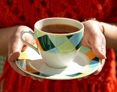 Cup Of Tea In Hands Of Woman