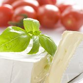 Mouldy cheese with basil leaves. Some tomatoes in background.