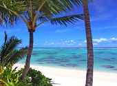 Beautiful Turquoise Lagoon in Rarotonga