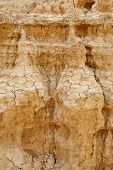 Cracked Ground In The Desert