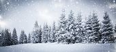 christmas background of snowy winter landscape with snow or hoarfrost covered fir trees - winter mag poster