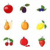 Orchard Fruits Icons Set. Cartoon Illustration Of 9 Orchard Fruits Icons For Web poster