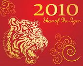 Vector image of new year of the tiger