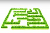 illustration of grass maze on abstract background
