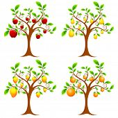 illustration of set of apple,mango,pear and orange tree