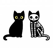 Cartoon Cat Skeleton poster