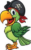 image of parrots  - Cute cartoon pirate parrot - JPG