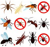 stock photo of pest control  - A vector collection of bugs  - JPG