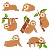 Cute Sloths. Cartoon Sloth Hanging On Tree Branch. Baby Jungle Animal Vector Isolated Characters. La poster