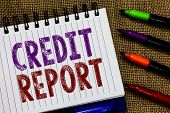 Text Sign Showing Credit Report. Conceptual Photo Borrowing Rap Sheet Bill And Dues Payment Score De poster