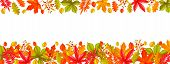 Seasonal Hello Fall Page Design Or Border With Autumn Foliage Maple, Oak, Elm, Chestnut, Leaves Rhus poster