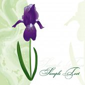 Card with iris