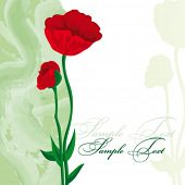 Card with red poppies