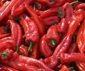 Many spicy red chillies poster
