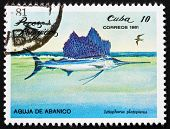 Postage stamp Cuba 1981 Indo-Pacific Sailfish