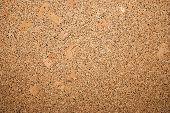 Seamless Cork Texture.
