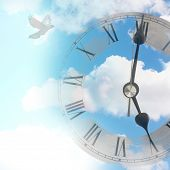 Clock against blue summer sky with flying bird