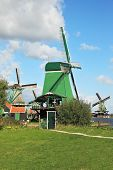 Countryside - an ethnographic museum in the Netherlands. Three windmills and farm buildings on a gre