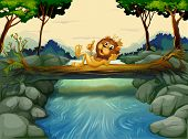 Illustration of a lion with a crown at the river