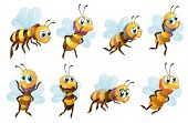 Illustration of the eight bees in different positions on a white background