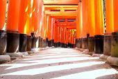 Nahaufnahme der Torii-Tore am Fushimi Inari-Schrein in Kyoto, japan.fushimi-Inari-Schrein