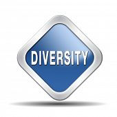 Diversity towards diversification in culture ethnic social age gender genetics political issues