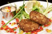 image of crab-cakes  - This is a crab cake appetizer a gourmet restaurant with sauce and garnish