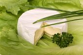 Soft Cheese Camembert Brie