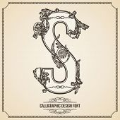 Calligraphic Design Font with Typographic Floral Elements for your Artworks. Nice for Page Decoration. Letter S
