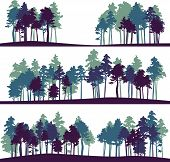 set of different landscape with pine trees