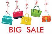 Colorful Fashion Women's Handbag Hang On Ribbon.big Sale
