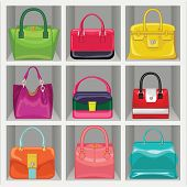 Multi-coloured Fashion Women's Handbag In The Wardrobe