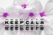 Keep Calm With Pink Flowers poster