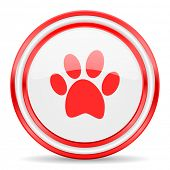 pic of webbed feet white  - foot red white glossy web icon - JPG