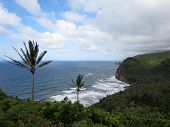 Pololu Valley and ocean