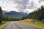 Bow Valley parkway landscape in Canada Rocky Mountains