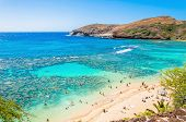 image of swim meet  - day view of snorkeling tropical paradise Hanauma bay in Oahu - JPG